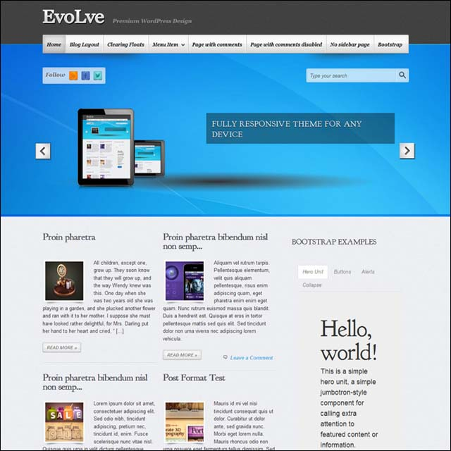 evolve.wordpress.theme
