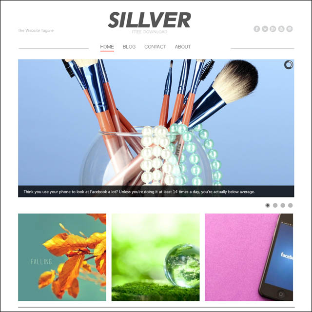 silver.free.premium.wordpress.theme