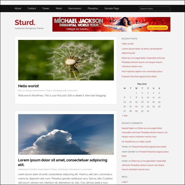 sturd-wordpress-theme